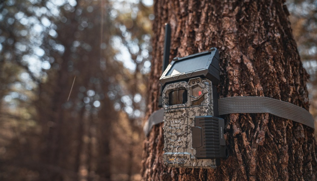 Can Trail Cameras Save Lives?
