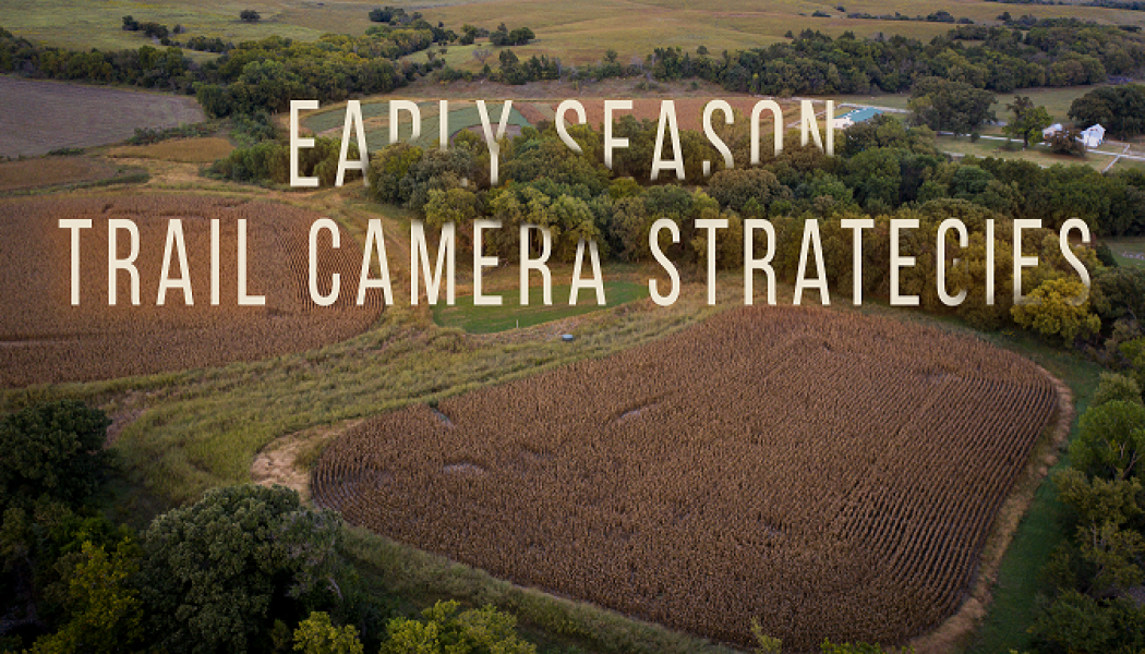 Building Whitetails - Early Season Strategies
