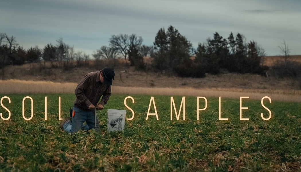 Building Whitetails - How and Why to Pull a Good Soil Sample