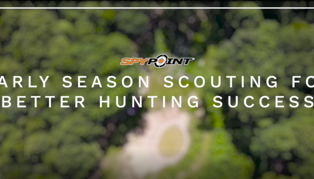 Early Season Scouting with Purpose for a Better Hunting Season