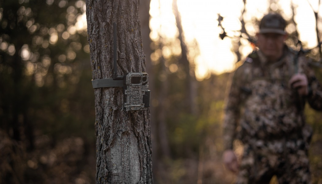Picking a Hunting Property's Best Trail Camera Locations