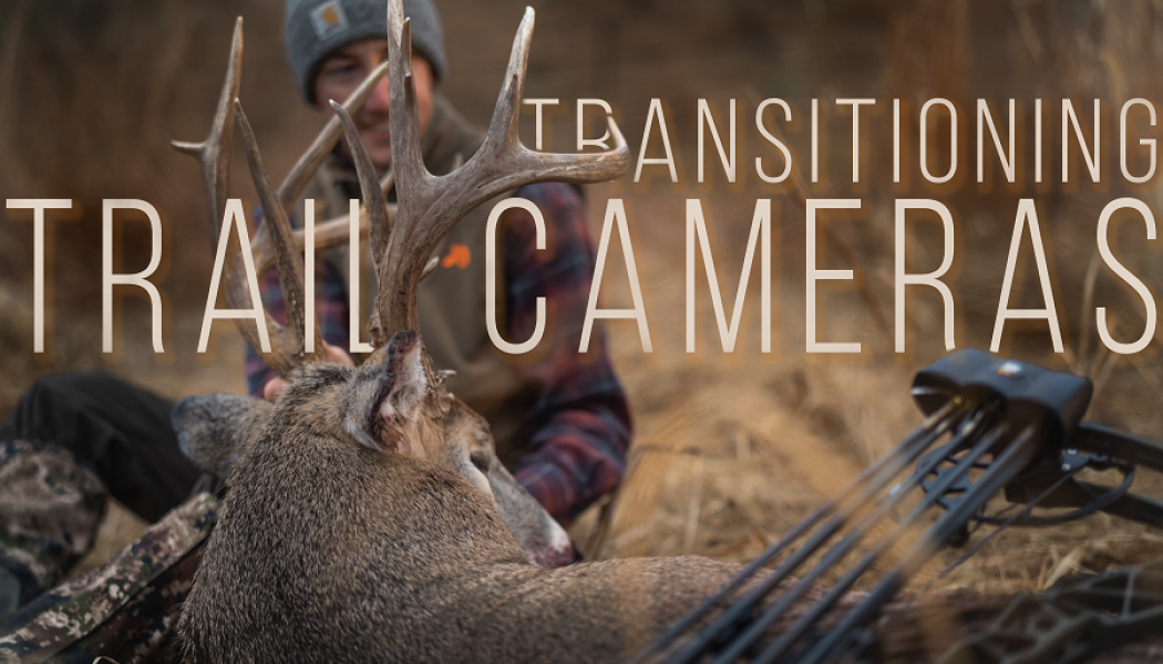 Transitioning Trail Cameras from Summer to Fall | Building Whitetails