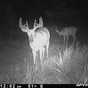 Setting Expectations for Your Hunting Season