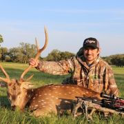 10 Tips for Hunting Axis Deer